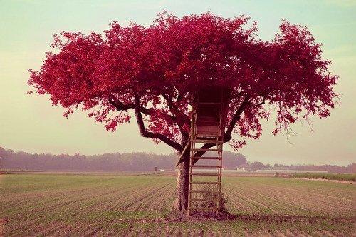 悲伤恋爱故事 比悲伤更悲伤的故事_真是个悲伤的故事_悲伤的故事_这是一个悲伤的故
