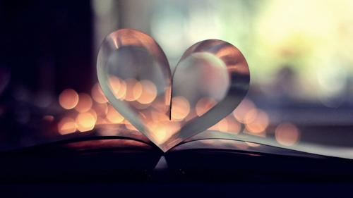 Book Cover Photography Lighting : 心动爱情图片 在花海里找到了遗失的半颗心 爱情 小说网