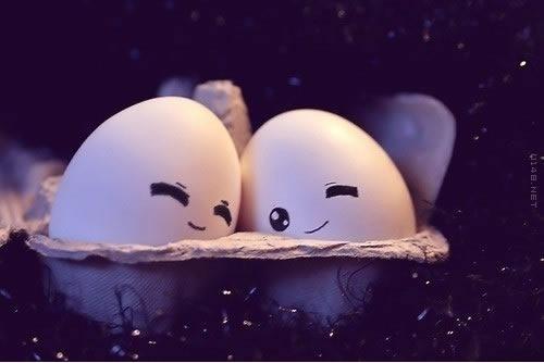 两颗鸡蛋之间的爱情故事