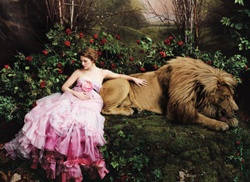 美女与野兽